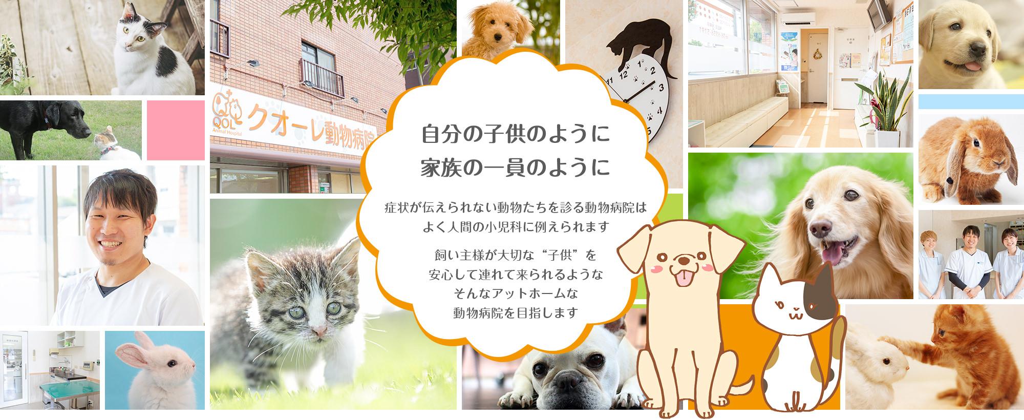"""自分の子供のように 家族の一員のように 症状が伝えられない動物たちを診る動物病院はよく人間の小児科に例えられます。 飼い主様が大切な""""子供""""を安心して連れて来られるようなそんなアットホームな動物病院を目指します"""